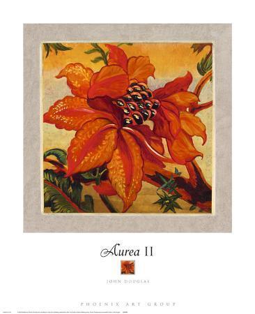 Aurea II
