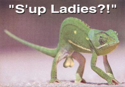 S'up Ladies!
