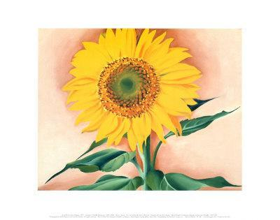 A Sunflower from Maggie, 1937