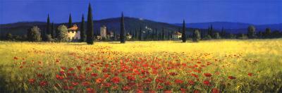 Tuscan Panorama, Poppies
