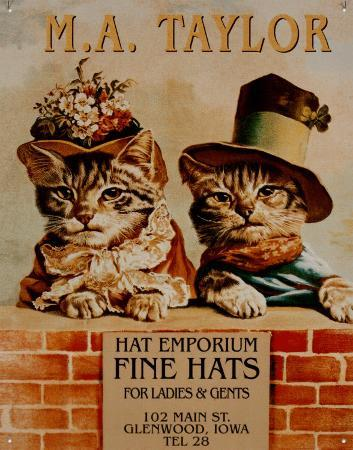 Hats 2 kittens