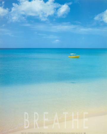 Blue Seas of Barbados