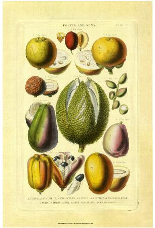 Fruits and Nuts II