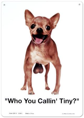Who You Callin Tiny