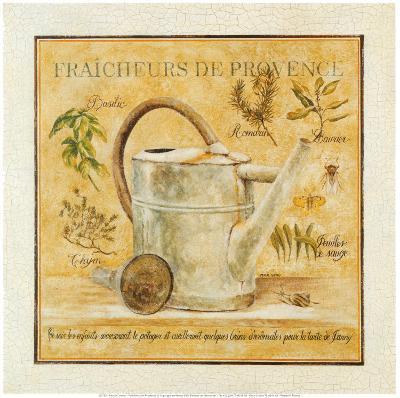 Fraicheurs de Provence
