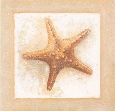 Etoiles de Mer IV