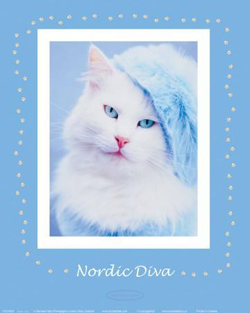 Nordic Diva