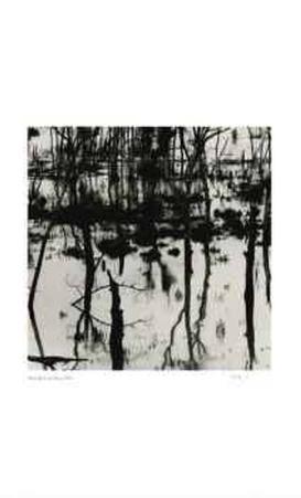 Untitled (trees reflecting)
