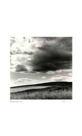 Untitled (darkening sky)