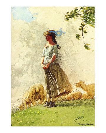 Fresh Air with Sheep