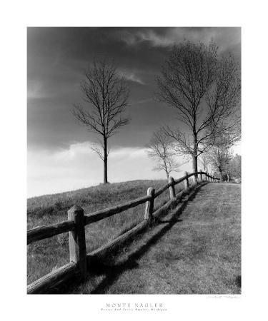 Fences and Trees, Empire, MI