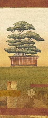 Bonsai II