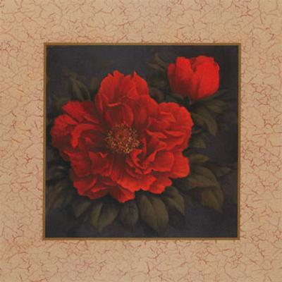 Red Carnation with Border I