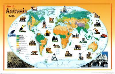 World of Animals Map