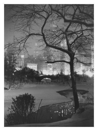 Winter at Night, New York, Central Park