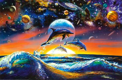 Dolphin Universe