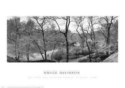 The Pond and Gapstow Bridge, Central Park, 1992