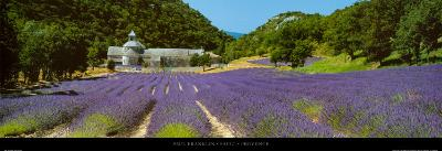 Sault - Provence