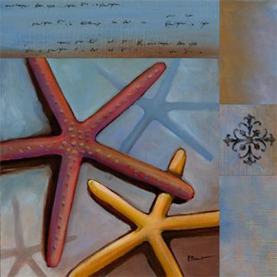 Sanibel Starfish