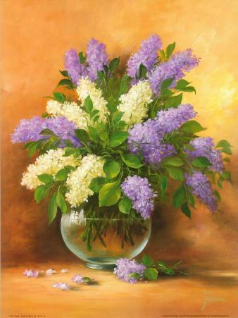 Smell of Lilac II