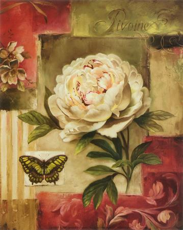 Peony and Butterfly