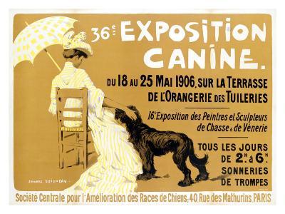 36th Exposition Canine de Briard
