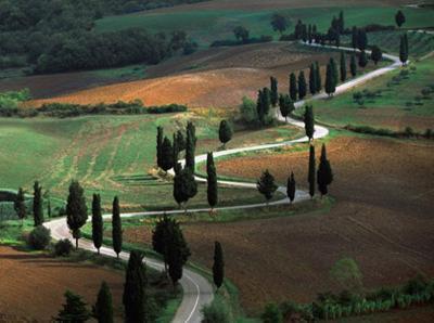 Tuscany Winding Road