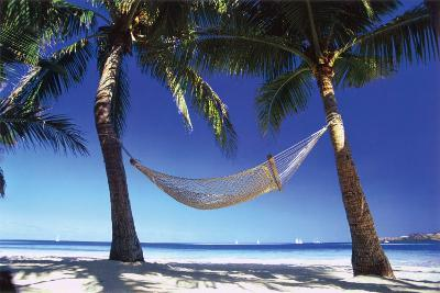 Paradise In The Tropics
