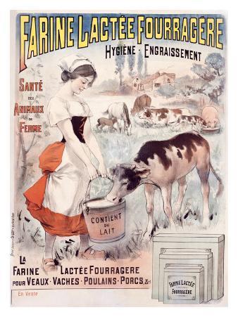 Farine Lactee Fourragere