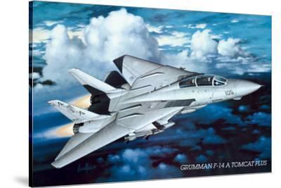 Airplane Grumman Tomcat F-14
