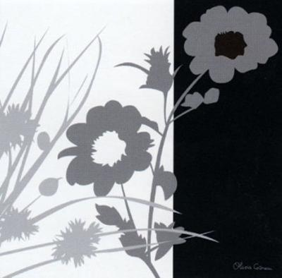 Noir and Blanc