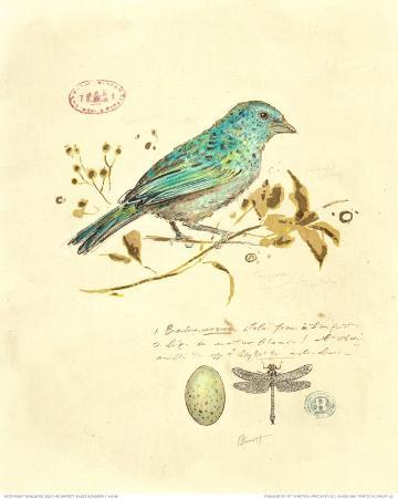 Gilded Songbird I