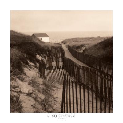 Dune Fence