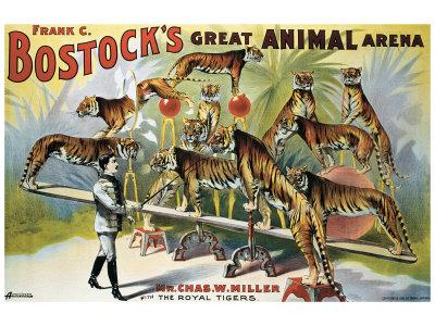 Bostock's Great Animal Arena