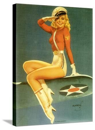 Pin-Up Girl: Army Air Force