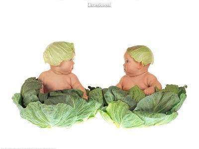 Cabbage Kids