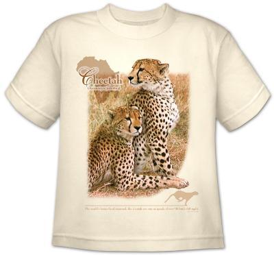 Youth: Animal Wildlife - Cheetah