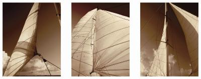 Windward Sails Triptych