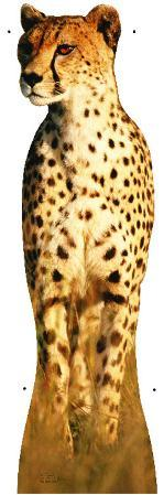 Cheetah Lifesize Standup