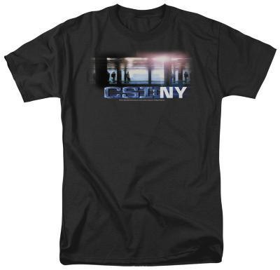CSI - New York Subway