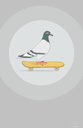 Skateboarding Pigeon