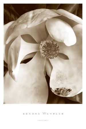 Fleur No. 3