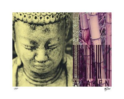 Buddha For Sale II