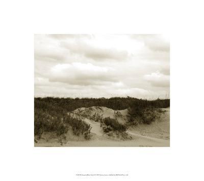 Ocracoke Dune Study II