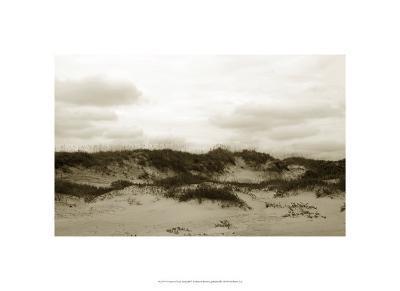 Ocracoke Dune Study III