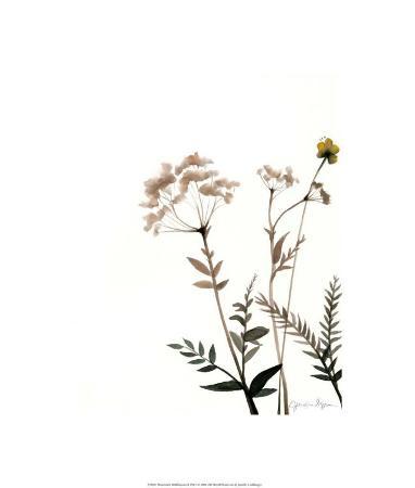 Watermark Wildflowers IX
