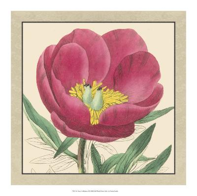Peony Collection I