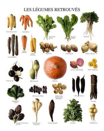 Vegetables of Yesteryears