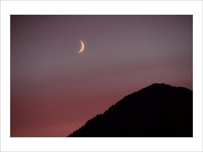 Purple Mountain Moon