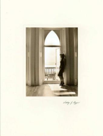 Reminiscing in the Window VI